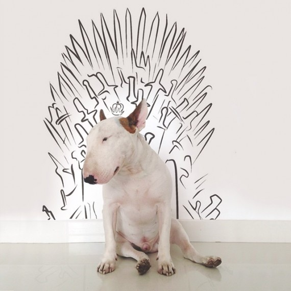 jimmy-choo-bull-terrier-illustrations-rafael-mantesso-11